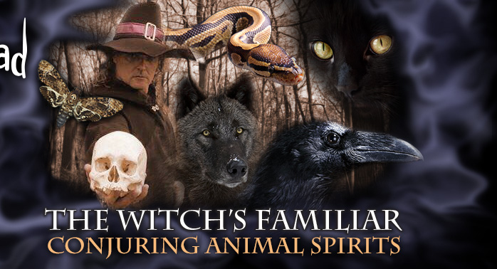The Witches Familiar: Conjuring Animal Spirits